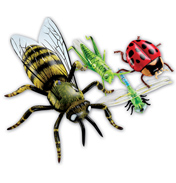 Inflatable Insects