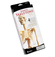 Simply Skeletons