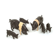 Britains Saddleback Pigs