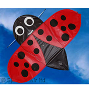 Spirit Of Air Buzzer Ladybird Bug Kite