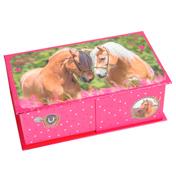 Horses Dreams Jewellery Box (Pink)