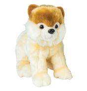 Go Puppy Go Sammy The Pomeranian