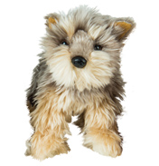 Go Puppy Go Tanner The Yorkie