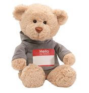 Hello My Name Is Teddy Bear