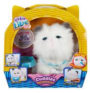 Cuddles My Dream Kitten