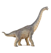 PAPO Dinosaurs Brachiosaurus