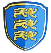 Lion Knight Foam Shield