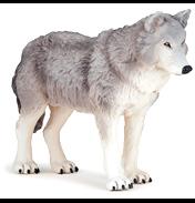 Large Wolf