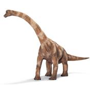 Brachiosaurus 1:40 Scale