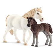 Dartmoor Pony Mare & Foal