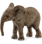 African Elephant, Calf