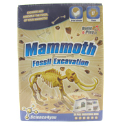 Fossil Excavation Mammoth