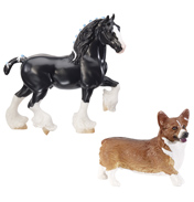 Shire Stallion and Corgi Dog
