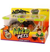 Electronic Spider Striper & Spider Habitat